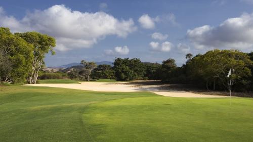 ゴルフ カレドニア